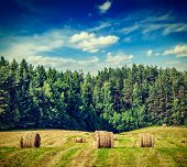 stock photo of hay bale  - Vintage retro effect filtered hipster style image of hay bales on field in summer - JPG