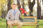 Elderly gentleman holding a bunch of red tulips seated on bench in park