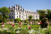 image of chateau  - Chateau de Chenonceau from the gardens in Loire Valley - JPG