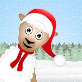 Christmas sheep