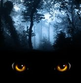 image of werewolf hunter  - Dark series  - JPG