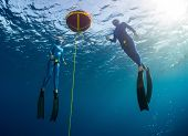 Two free divers training open water on the buoy