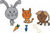 Cute group animals vector illustration