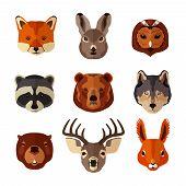 Animal portrait flat icon set