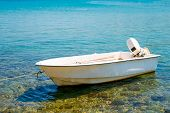White Motor Boat Tied To The Shore