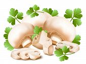 Mushrooms with parsley. Vector illustration.