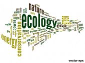 Vector eps concept or conceptual 3D abstract green ecology and conservation word cloud text on white background