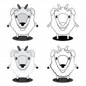 illustration lamb in different styles