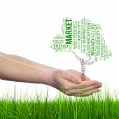 Concept or conceptual tree media word cloud tagcloud in man or woman hand isolated on white grass background