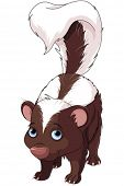 stock photo of skunks  - Illustration of very cute skunk - JPG