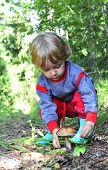 Little Girl  And  Mushroom