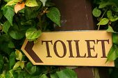 stock photo of gents  - Signs to the toilet in the garden - JPG