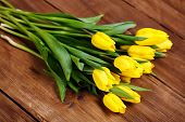 foto of yellow buds  - Big bouquet of beautiful yellow flowers, tulips, lie on the wooden floor of the old brown boards, green stems and leaves, dense buds of yellow tulips, recently cut in the flowerbed.