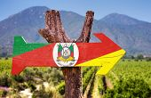 image of gaucho  - Rio Grande do Sul wooden sign with vineyard background - JPG