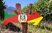 foto of gaucho  - Rio Grande do Sul wooden sign with vineyard background - JPG