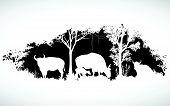 foto of oxen  - animal of wildlife is bull or gaur or wild ox  vector design - JPG