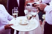 stock photo of serving tray  - Capture of a Waiter serving champagne on tray
