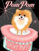 image of pomeranian  - Illustrated poster of a Pomeranian dog and fictitious cosmetic brand advertisement  - JPG
