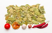 pic of bay leaf  - Bay leaves spices and herb on white background for decorate design - JPG
