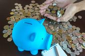picture of money  - man hand earn money from saving in piggy bank saving money and earn money by your hand - JPG
