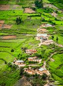 image of farm land  - A view from high up of some houses and green agricultural land set against in the rural area of the Kabale district in Southern Uganda - JPG