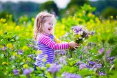 image of country girl  - Child picking wild flowers in field - JPG