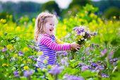 Постер, плакат: Little Girl Picking Wild Flowers In A Field