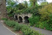 pic of greenery  - Old stone arches covered in greenery - JPG