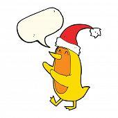 foto of crazy hat  - cartoon bird wearing xmas hat with speech bubble - JPG