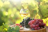 stock photo of grape  - Wineglass and grape on wooden barrel on grape plantation background - JPG