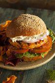 pic of burger  - Homemade Organic Salmon Burger with Tartar Sauce - JPG