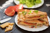 pic of tomato sandwich  - Cheese sandwich with tomato and green lettuce - JPG