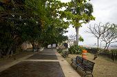 Parque De Las Palomas Paloma Park