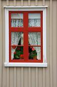 Pretty little window