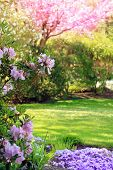 stock photo of beautiful flower  - Beautiful park garden in spring - JPG