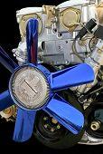 Blue Fan