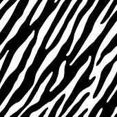 Zebra Fell. Seamless vector wallpaper