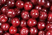 Close-up Of Pile Of Ripe Cherries. Full Screen Of Ripe Red Cherries Background. Top View poster