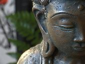 Close Up Of Buddha Head