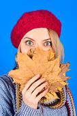 Woman Hides Face By Yellow Leaves. Autumn Mood. Autumn Time. Pretty Woman With Autumn Yellow Maple L poster