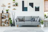 Real Photo Of An Elegant Living Room Interior With A Comfy Couch, Paintings And Shelves poster