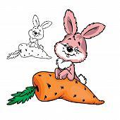 cutebushybunnywith carrot
