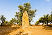 menhir in Almendres near Evora, Alentejo, Portugal