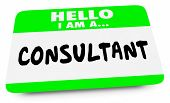 Consultant Expert Consulting Hello Name Tag 3d Illustration poster