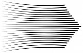 Speed Lines Isolated Set. Sun Rays Or Star Burst Black Vector Elements Isolated.set Of Different Sim poster