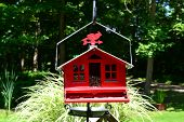Red Bird Feeder