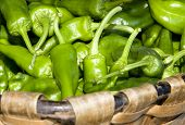 Vegetal Green Peepers
