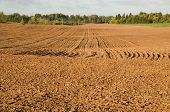 foto of loam  - Agriculture plow field in autumn - JPG