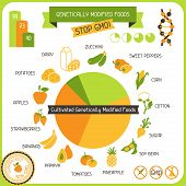 stock photo of modifier  - Information Poster Genetically Modified Foods - JPG