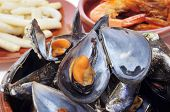 closeup of some seafood spanish tapas, such as mejillones al vapor (steamed mussels), gambas al ajil